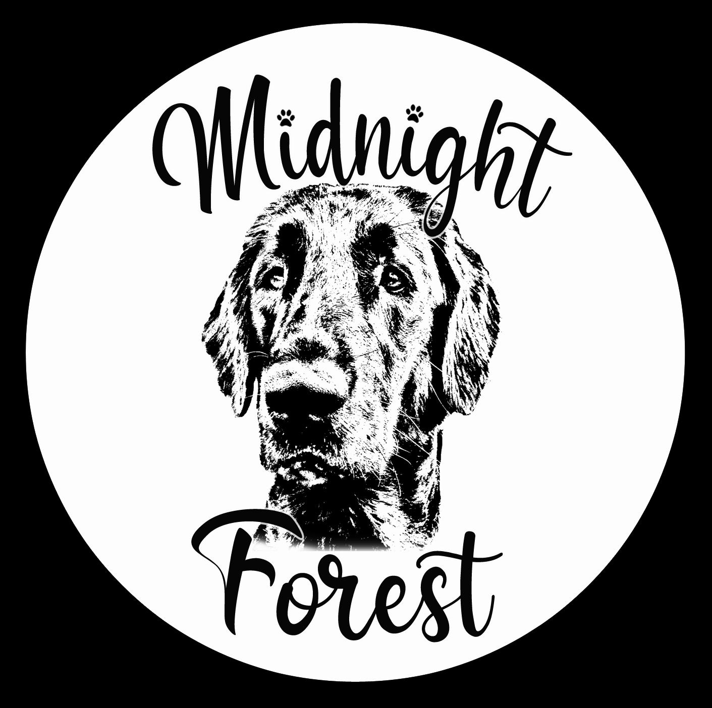 logo Midnight Forest
